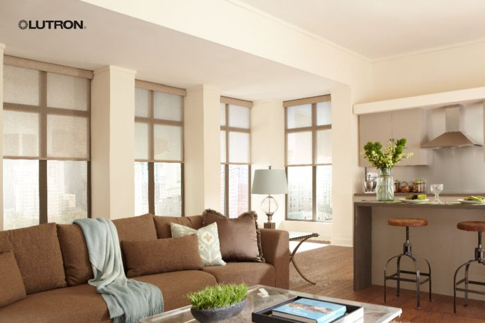 Lutron Electric Curtains & Blinds